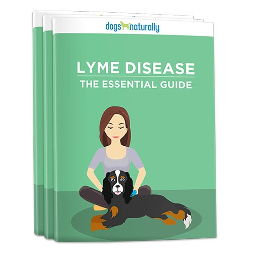Grab this free guide and learn how to get ticks off your dog without toxic chemicals .